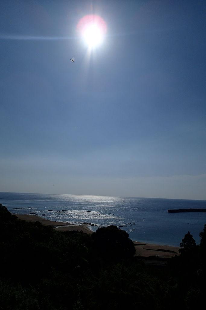 高知の砂浜